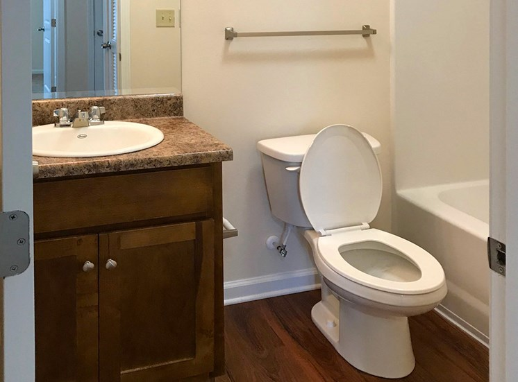 upgraded bathroom with plank flooring and granite look countertops