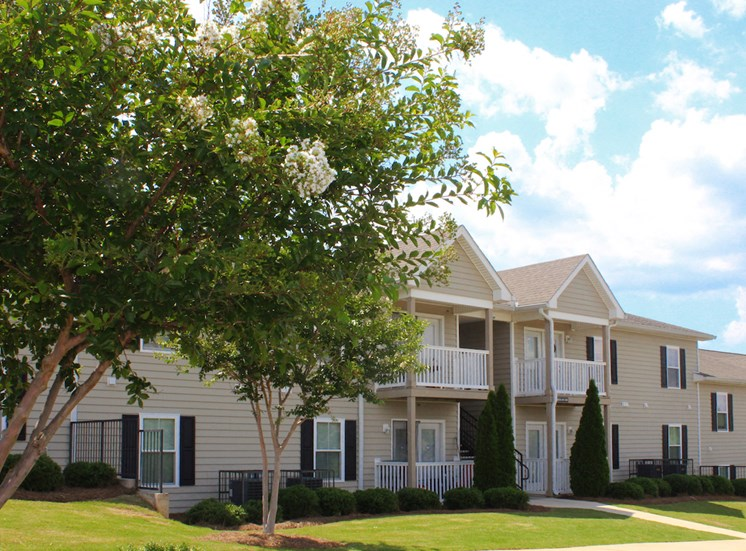 lush crepe myrtles outside Southbrook Apartments
