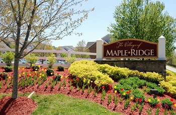 344 Red Maple Drive 2-4 Beds Apartment for Rent Photo Gallery 1