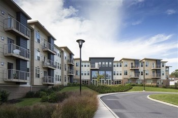 325 Pusey Street 1-2 Beds Apartment for Rent Photo Gallery 1