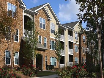 2305 Global Forum Blvd 1-3 Beds Apartment for Rent Photo Gallery 1