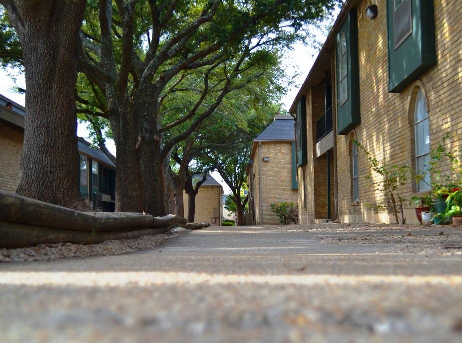 San Antonio photogallery 4