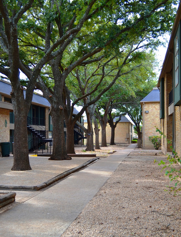 San Antonio photogallery 5