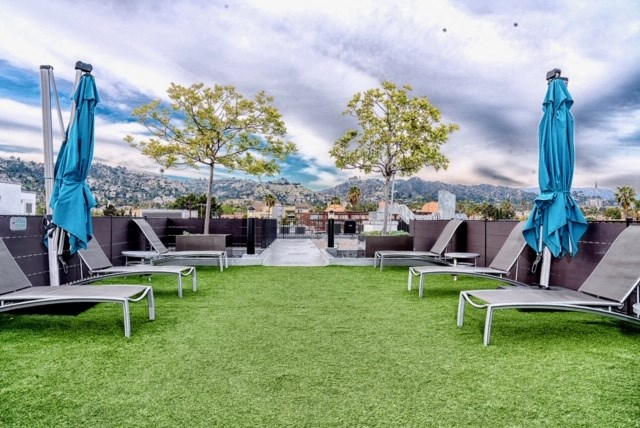 Rooftop grass area