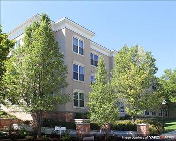 2155 Grant Avenue Studio-1 Bed Apartment for Rent Photo Gallery 1