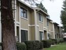 Pinewood Village Condominiums Community Thumbnail 1