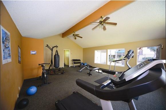 Willow Park Apartments 1459 Curci Drive San Jose Ca Rentcaf