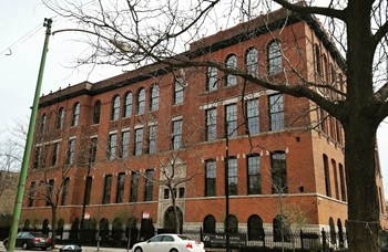 1855 N. Sheffield, Ave. 1-3 Beds Apartment for Rent Photo Gallery 1