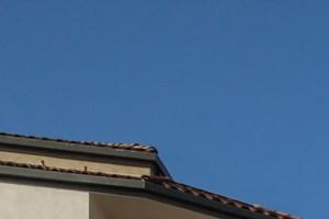 Pasadena photogallery 1