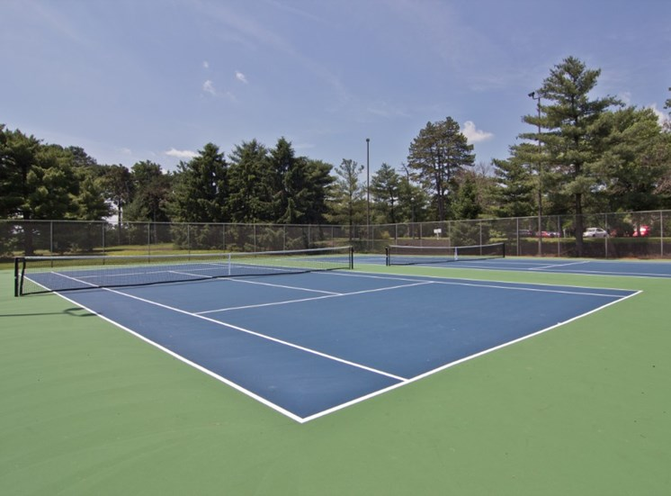 Tennis Courts Picture