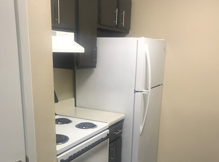 Updated Kitchen and New Appliances