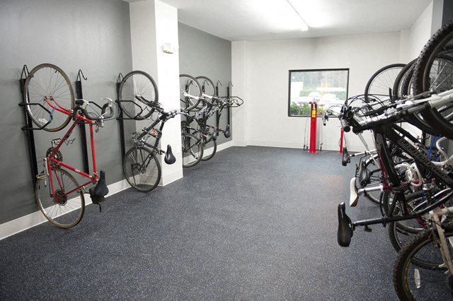 cycle center, apartments, rentals, studio, 1 bedroom, 2 bedroom,