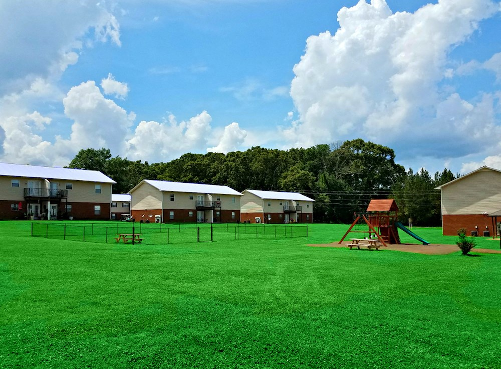 lush green landscape, dog park, and playground at mountain view