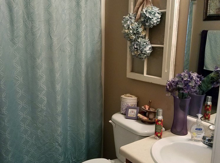 bathroom at mountain view with tub/shower