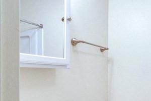 Amherst Manor Apartments - Full Bath 2