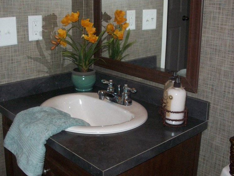 Bathroom Sink at Pine Village Rental Home Community in Sanford, NC