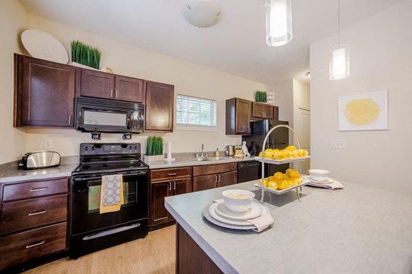 Monon Place - Modern Kitchen