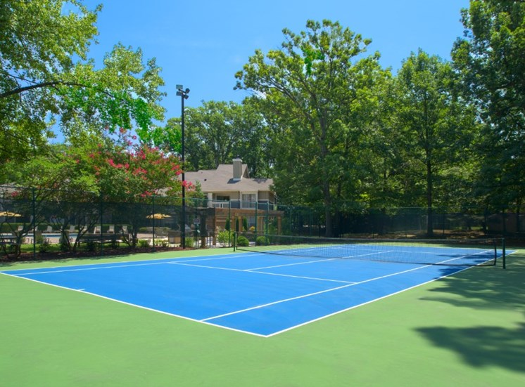 Tennis Court Picture