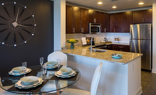 New Highrise Modern Kitchen North Bethesda and Rockville MD