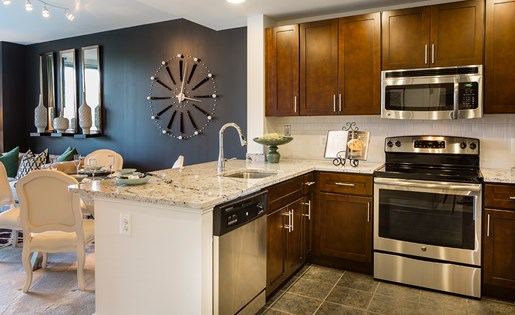 North Bethesda Apartment with modern kitchen and stainless steel energy efficient applicances