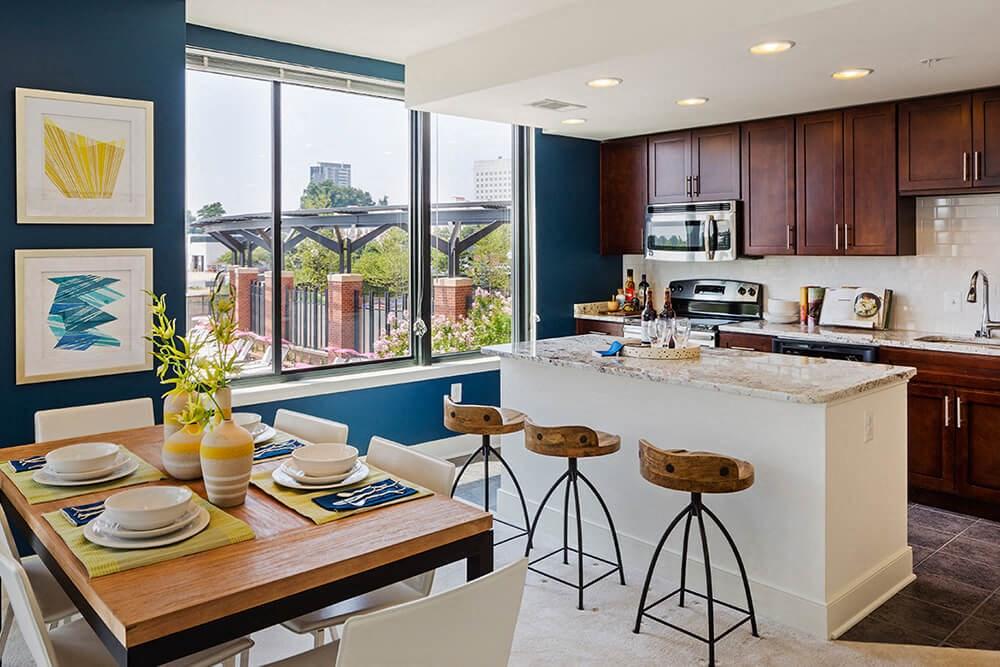 North Bethesda new apartment modern kitchen