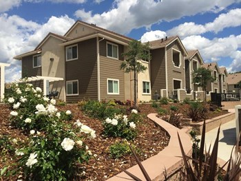 4950 Hackberry Lane 1-2 Beds Apartment for Rent Photo Gallery 1