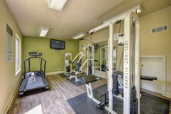 Luxury Apartment Community Area Gym Fitness Center Workout Cardio Weight Training Treadmill Elliptical