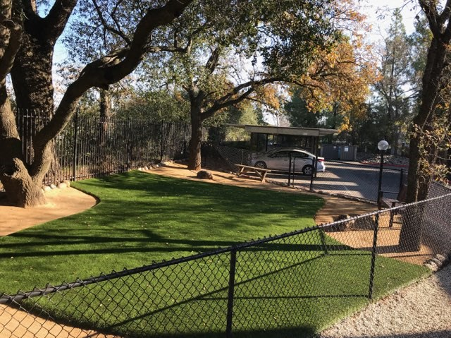 Luxury Apartment Community Dog Park Pet Friendly Outdoor Green Space