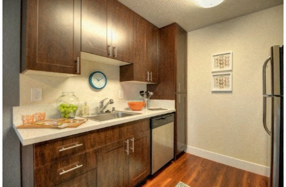 Kitchen with Stainless Steel Appliances Dishwasher, Refrigerator, Oven, and Wood Cabinets