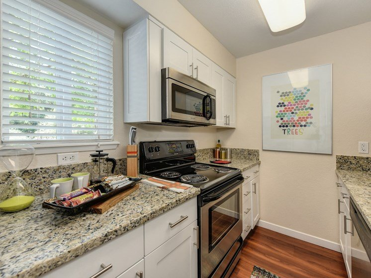 Luxury Apartment Community Kitchen with Granite Countertops and Stainless Steel Appliances