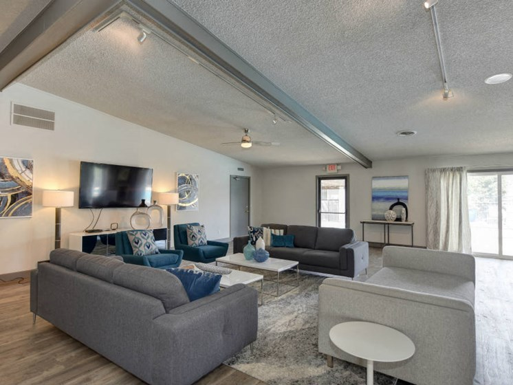 Community Clubhouse Lounge Area with Harwood inspired flooring through out with gray couches and Flat Screen Television