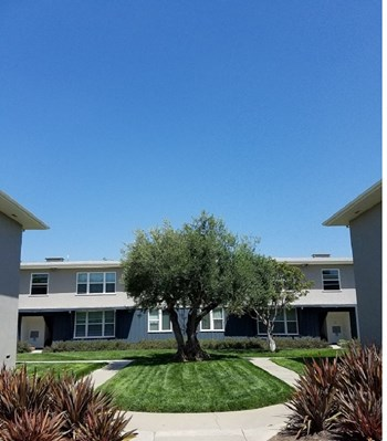3120 Hollypark Drive #2 Studio-1 Bed Apartment for Rent Photo Gallery 1