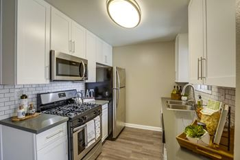 29605 Solana Way 1 Bed Apartment for Rent Photo Gallery 1