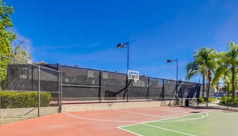 Vista Promenade Luxury Apartment Homes Lifestyle - Outdoor Basketball Court