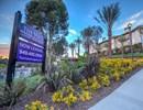 The Vista at Laguna Community Thumbnail 1
