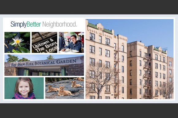 Bedford Park Bronx Apartments For Rent