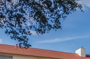 San Antonio photogallery 19