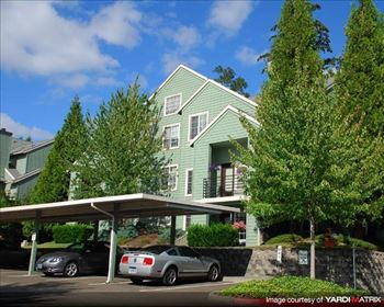 12320 SW 72nd Ave 1 Bed Apartment for Rent Photo Gallery 1