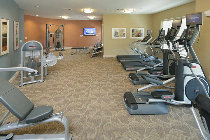 Resident Gym and media Lounge