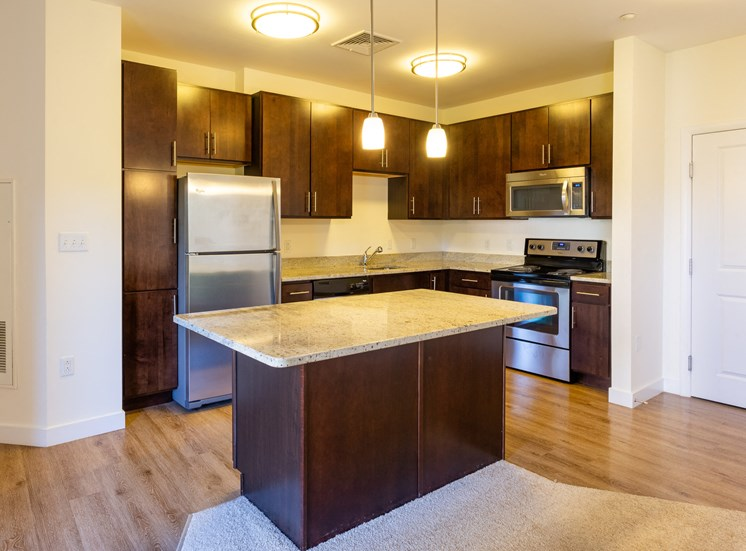 Kitchen granite countertops dark, designer cabinets stainless steel appliances island