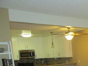 444 North Amelia Avenue Studio-2 Beds Apartment for Rent Photo Gallery 1
