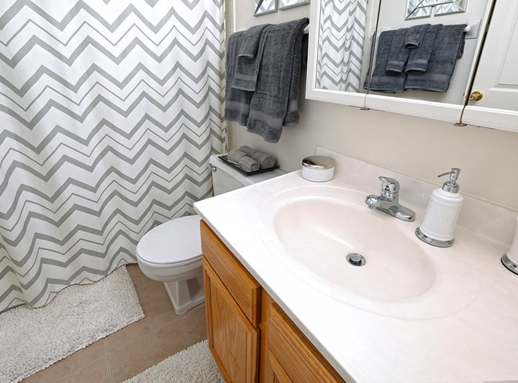 Full Bathroom at Ashmore Trace Apartments