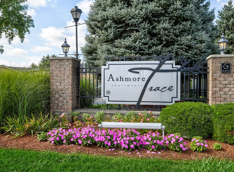 Entrance with beautiful landscaping at Ashmore Trace