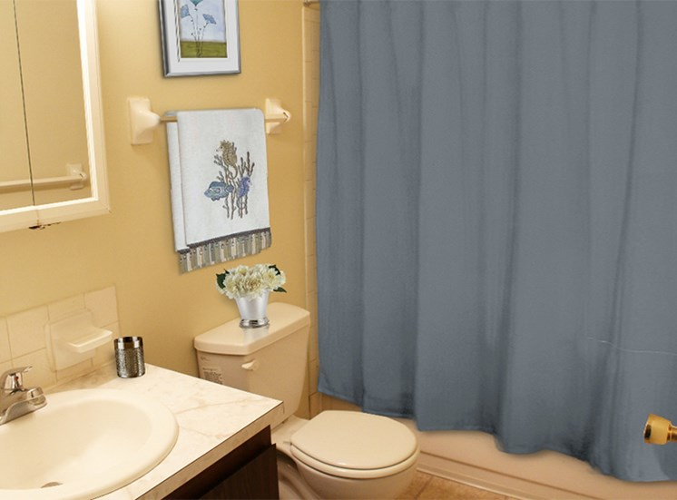 Full-size bathroom at Brookview Apartments