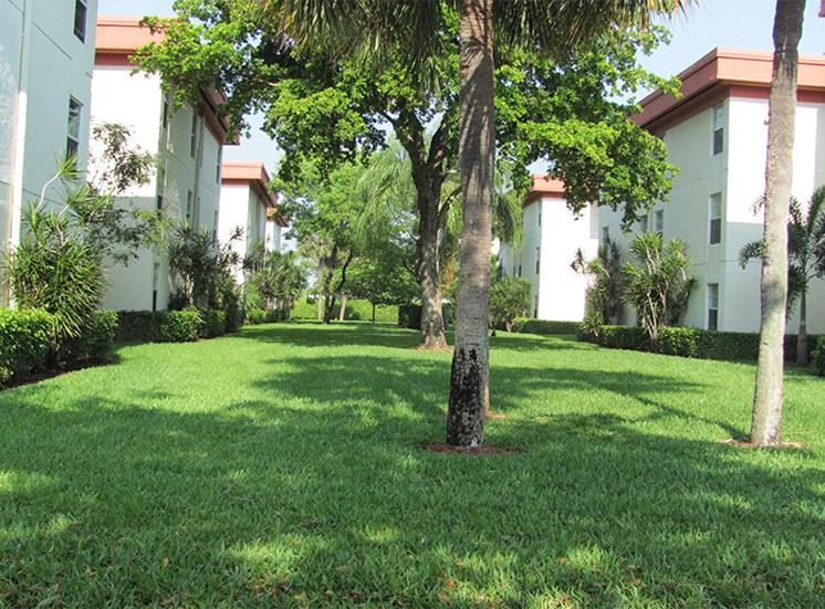 Outdoor green-space between buildings