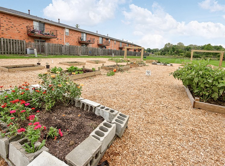 Community Garden at Carriage House East