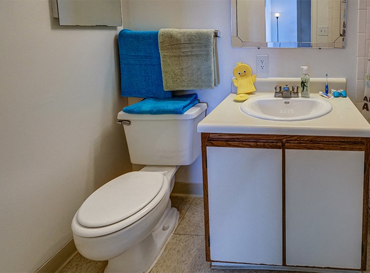 Two Bedroom Style Apartment Bathroom at Loper Commons