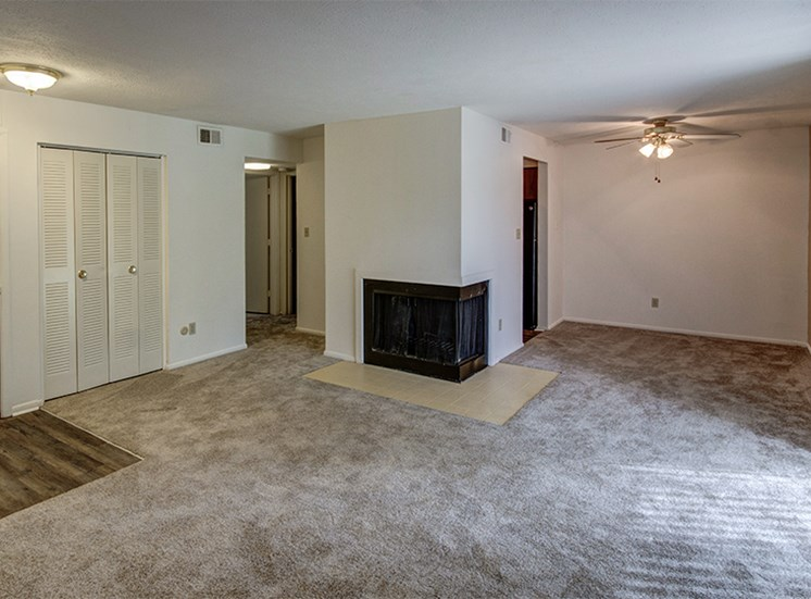 Living Room with Fireplace at Woodlake Apartments