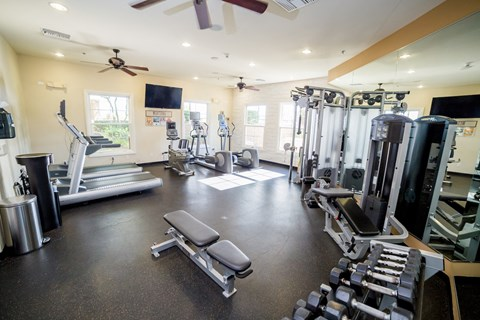 Mediterra Apartment Homes Lifestyle - Fitness Center