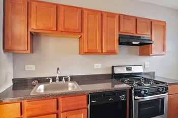 1348-1352 N. Austin Blvd. & 7-9 Greenfield St. 1-2 Beds Apartment for Rent Photo Gallery 1
